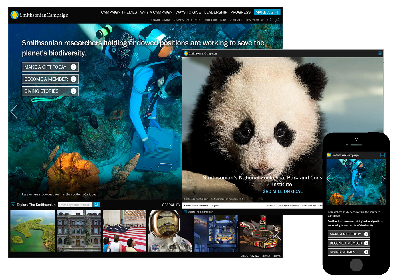 Smithsonian Campaign screenshots of homepage, unit page, mobile.